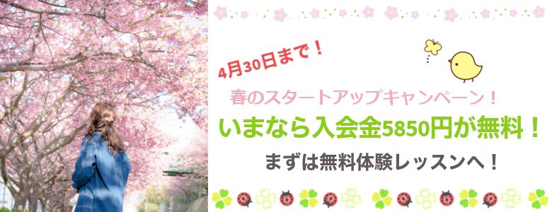 春のスタートアップキャンペーンsp