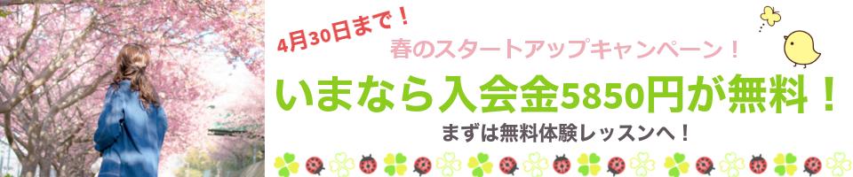 春のスタートアップキャンペーン!